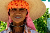 Although Filipino workers were a large and important part of the farm labor workforce in the Coachella Valley from the 1920s to the 1970s, very few grape workers come from the Philippines today. Felic... - David Bacon - 30-05-2006