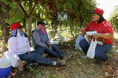 Yolanda Serna, an organizer for the United Farm Workers, talks with grape pickers as they eat lunch in the fields, during the campaign to organize a union at VBZ, a large Delano table grape grower. Ca... - David Bacon - 25-09-2006