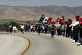 Two hundred farm workers on the second day of their march up the Salinas Valley, protesting a wave of immigration raids in Latino communities, and calling for legalization of undocumented immigrants a... - David Bacon - 2000s,2004,activist,activists,america,americans,bme minority ethnic,CAMPAIGN,campaigner,campaigners,CAMPAIGNING,CAMPAIGNS,DEMONSTRATING,DEMONSTRATION,DEMONSTRATIONS,Diaspora,farm,farmworker farmworker
