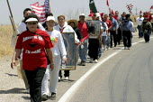 Two hundred farm workers on the second day of their march up the Salinas Valley, protesting a wave of immigration raids in Latino communities, and calling for legalization of undocumented immigrants a... - David Bacon - 30-06-2004