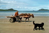 An old man driving his horse and cart along the beach with his dog. - David Mansell - 10-08-1998