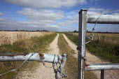 Walkers who use the footpath from Poundbury to the ancient hill fort of Maiden Castle are unable to cross the A35 safely, there is an underpass which could be used although The Prince of Wales, The Du... - David Mansell - 26-09-2009