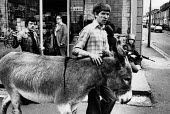 Catholics with a donkey as a partoling Bstidh Army soldier looks on, Falls Road West Belfast - David Mansell - ,1970s,1978,animal,animals,Catholic,Catholics,cities,city,conflict,conflicts,domesticated ungulate,domesticated ungulates,donkey,donkeys,highway,male,man,men,nationalists,people,person,persons,Road,RO