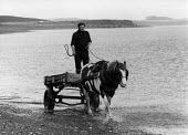 Seacoaler driving a horse and cart, Cresswell, Northumberland - David Mansell - 14-04-1977