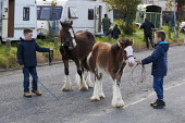 Country Fair Day, The Ballinasloe Horse Fair, County Galway, Ireland - David Mansell - 2010s,2012,ACE,animal,animals,Ballinasloe,BAME,BAMEs,BME,bmes,caravan,caravans,child,CHILDHOOD,children,culture,dealer,dealers,dealing,diversity,domesticated ungulate,domesticated ungulates,equestrian