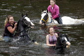 Appleby Horse Fair, Cumbria, washing horses in the River Eden - David Mansell - ,2010s,2015,adolescence,adolescent,adolescents,animal,animals,BAME,BAMEs,BME,bmes,boy,boys,child,CHILDHOOD,children,diversity,domesticated ungulate,domesticated ungulates,enjoy,enjoying,enjoyment,eque