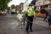 Appleby Horse Fair, Cumbria, Police move horses to reopen the road to traffic at the end of the fair - David Mansell - 2010s,2015,adult,adults,animal,animals,CLJ,domesticated ungulate,domesticated ungulates,equestrian,equine,Fair,FEMALE,force,highway,horse,horses,MATURE,Officer,officers,people,person,persons,Police,po