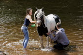 Appleby Horse Fair, Cumbria, washing horses in the River Eden - David Mansell - 07-06-2015