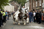 Appleby Horse Fair, Cumbria, Tom Harker a horse dealer from Darlington proudly driving his two horses past the Grapes Public House speeding along the Sands road. - David Mansell - ,2010s,2015,adult,adults,age,ageing population,animal,animals,Appleby,BAME,BAMEs,BME,bmes,buy,buyer,buyers,buying,cart,CLJ,commodities,commodity,dealer,dealers,dealing,diversity,domesticated ungulate,