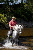 Appleby Horse Fair, Cumbria, Brian Metcalfe who has a long family history of owning and breeding horses, washing and relaxing his horses in the South Tyne River after the gruelling journey over Hartsi... - David Mansell - 10-06-2015