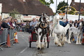 Wickham Horse Fair a traditional one day annual event, Hampshire. Horse dealers showing off their horses. - David Mansell - 20-05-2015