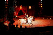 Robert Brothers Circus consists of the most fantastic performing acts - David Mansell - 2000s,2005,ACE arts culture & entertainment,act,animal,animals,balance,Brothers,domesticated ungulate,domesticated ungulates,entertainment,equestrian,equine,horse,horses,performance,performer,performe