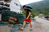 Young soldiers move sandbags used to protect the police station in Toribio. Indigenous Columbians were forced off their land in the Rio Cauca Valley, and resettled in the mountain community of Toribio... - David Bacon - 2000s,2006,adult,adults,americans,americas,Armed,armed forces,army,Cauca,coca,Colombia,Colombian,Colombians,columbian,columbians,communities,community,EARNINGS,EQUALITY,guerilla,guerillas,guerrilla,gu