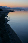 The Salton Sea, an artificial sea below sea level created in the desert between the Coachella and Imperial Valleys by the accidental diversion of the Colorado River. Today it is a sanctuary on the mig... - David Bacon - 29-05-2006