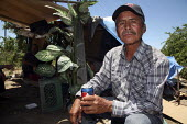 A migrant Mexican farmworker, who shares a small camp under the trees with two other workers. They have only been able to work a few days in the last few months, and cannot afford accommodation. They... - David Bacon - 2010,2010s,accommodation,agricultural,agriculture,America,American,americans,Amerindian,Amerindians,asleep,BAME,BAMEs,BME,bmes,camp,camping,camps,capitalism,capitalist,casual workers,Chiapas,coffee,de