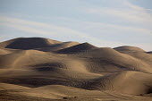 The Algodones Sand Dunes or dune sea are the largest mass of sand dunes in California. This dune system or Erg extends for more than 40 miles (60 km) along the eastern edge of the Imperial Valley, jus... - David Bacon - , American,1st,2010,2010s,4x4,America,American,americans,bike,bikes,border,dawn,dawning,day,daybreak,degradation,desert,desertification,DRIVER,DRIVERS,driving,dunes,eni,environment,Environmental,Envir