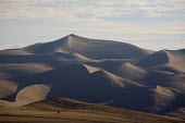 The Algodones Sand Dunes or dune sea are the largest mass of sand dunes in California. This dune system or Erg extends for more than 40 miles (60 km) along the eastern edge of the Imperial Valley, jus... - David Bacon - 05-12-2010