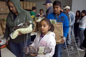 Families of Mexican farmworkers receive bags of food at the San Benito County Community Food Bank. Their pay is so low they sometimes can't afford enough food themselves. The food bank provides almost... - David Bacon - 04-06-2011