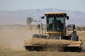 A mower cutting grass left after the harvest of a field, Seeley, Imperial Valley. California - David Bacon - 04-02-2012