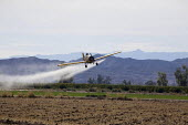 A crop duster spraying pesticides on a field south of Seeley an unincorporated community, in the Imperial Valley, California - David Bacon - American,2010s,2012,aeroplane,aeroplanes,agricultural,agriculture,agrochemicals,Air Pollution,air transport,aircraft,airplane,airplanes,America,American,americans,aviation,California,capitalism,capita