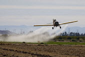 A crop duster spraying pesticides on a field south of Seeley an unincorporated community, in the Imperial Valley, California - David Bacon - 04-02-2012