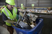 California- Workers at the recycling sorting facility of Alameda County Industries sorting and processing trash collected in local cities. - David Bacon - 18-02-2015