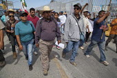 Tijuana, Mexico, Farmworkers in AONEMJS on strike for better conditions and pay. From the San Quintin Valley in Baja California migrant workers march to the USA Mexico border to draw attention to the... - David Bacon - 29-03-2015