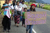 Boycott Driscolls, migrant farm workers demanding Trade Union recognition march to Sakuma Farms, a large berry grower in Washington. The workers and their supporters are demanding that the company bar... - David Bacon - 11-07-2015