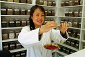 Chinese Doctor Dr Xushu dispensing Chinese Medicine - Duncan Phillips - 17-01-2001
