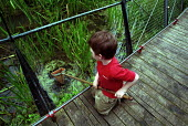 Child Pond Dipping at a Local Nature reserve Islington London - Duncan Phillips - 12-08-2002