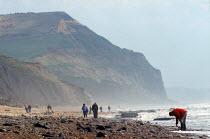 Fossil Hunters Lyme Bay Dorset UK - Duncan Phillips - 30-06-2003