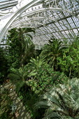 Palm House at Royal Botanic Gardens, Kew - Duncan Phillips - 06-04-2006