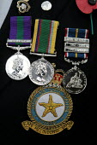 National Service Medals. Remembrance service London - Duncan Phillips - 10-11-2004