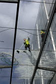 Window Cleaners on Glass Roof, Spitalfields, London - Duncan Phillips - 06-04-2013