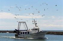 Fishing boat returning, France. - Duncan Phillips - 13-08-2006