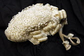 Barristers wig and Gown - Duncan Phillips - 25-11-2006