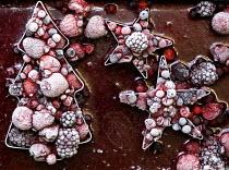 Frozen berries in christmas shapes - Duncan Phillips - 16-12-2005