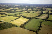 Aerial View of Countryside - south east - Duncan Phillips - 2010s,2013,aerial,country,countryside,east,EBF,Economic,Economy,farm,farmed,farming,farmland,farms,field,fields,outdoors,outside,producer,rural,south,view,woodland,woods