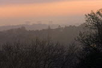 Morning light over, London - Duncan Phillips - 11-04-2005