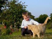 Child and Cat at an allotment - Duncan Phillips - ,2000s,2005,allotment,boy,boys,cat,cats,child,CHILDHOOD,children,cities,city,feline,garden,gardening,gardens,HORTICULTURAL,horticulture,juvenile,juveniles,kid,kids,male,OWNERSHIP,people,pet,pets,summe