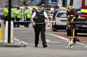 Police with sniffer dog at the scene of London double decker bus destroyed by suspected suicide bomber - Duncan Phillips - 2000s,2005,7/7,adult,adults,animal,animals,attack,attacking,attacks,blast,bomb,bomber,bombing,bombings,bombs,bus,bus service,BUSES,canine,CLJ,dog,dogs,explosion,EXPLOSIONS,incident,incidents,london,MA
