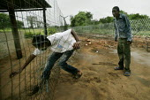 Beitbridge South African boarder. Migrants from Zimbabwean side of the Limpopo river cross illegally into South Africa, near Maroi farm, 30 km west of Beitbridge. The Limpopo river is the natural bord... - Felipe Trueba - 25-11-2007