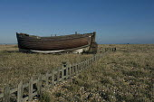 Wooden boat in a garden at Dungeness, Kent, England - Geoff Crawford - 30-01-2008