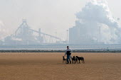 Against the background of the steel Industry on Teesmouth, the Corus Teesside steelworks, a man walks his greyhounds on North Gare Beach Hartlepool. - Geoff Crawford - 2000s,2003,Against,Air Pollution,animal,animal animals,animals,Beach,BEACHES,canine,capitalism,capitalist,chimney,chimneys,COAST,coastal,coasts,conservation,country,countryside,dog,dogs,EBF,EBF econom