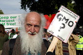 An elderly protester marches against GM food production in London. October 13th 2003 - Geoff Crawford - 2000s,2003,activist,activists,adult,adults,against,age,aged,ageing population,anti-GM,bald,beard,BEARDED,BEARDS,CAMPAIGN,campaigner,campaigners,CAMPAIGNING,CAMPAIGNS,Cymru,DEMONSTRATING,DEMONSTRATION,
