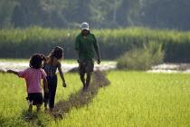 A farmer and his family walk in a paddy field, Peru - Geoff Crawford - 11-02-2004
