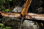 A simple but effective water directing device, in Austrias Zillertal region in the Tyrol. - Gerry McCann - 06-08-2009