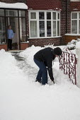 A woman clears snow from the path of an elderly neighbours house Manchester, UK - Paul Herrmann - 05-01-2010