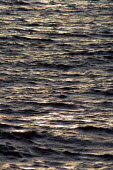 a calm sea - Paul Herrmann - 21-02-2002