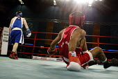 Commonwealth Games, Manchester. A boxer is knocked to the floor. - Paul Herrmann - 2000s,2002,aggression,aggressive,BAME,BAMEs,Black,blow,BME,bmes,boxer,boxing,boxing ring,diversity,ethnic,ethnicity,fight,fighting,Games,knockout,match,minorities,minority,pain,people,poc,punch,punchi